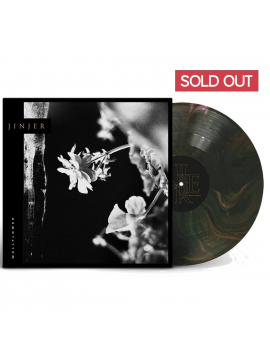 Wallflowers - Recycling COLOR Vinyl